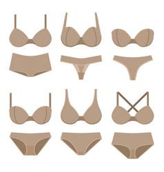 Beige bras and panties vector