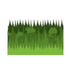 Colorful lanscape with natural pines vector