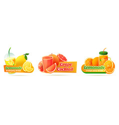 Labels for refreshing citrus or fruity beverages vector