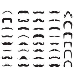 Mustache icon set vector image