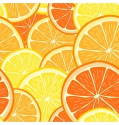 seamless pattern with hand drawn orange vector image