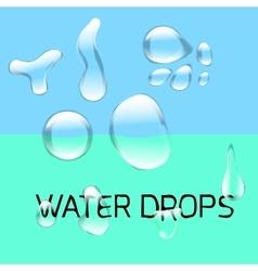 Transparent water drop set on light gray vector image