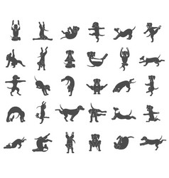 Yoga dogs poses and exercises doing clipart vector
