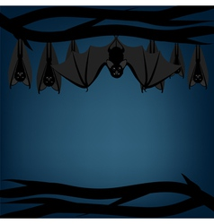 Bats hanging on branch vector image vector image