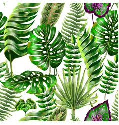 tropical seamless pattern with monstera palm vector image
