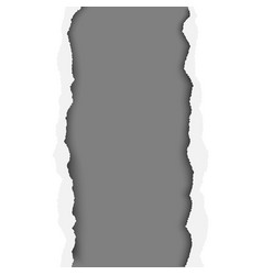 A ragged vertical hole in paper sheet vector