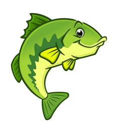 cartoon largemouth bass vector image