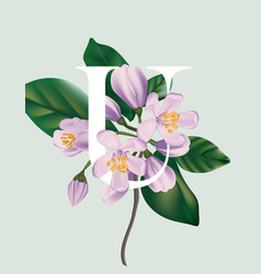 cherry bloosom violet flowers branch tender bloom vector image