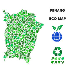 eco green collage penang island map vector image
