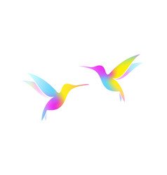 Flying hummingbirds vector