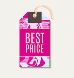 Pink bright tags with shabbi chick vector