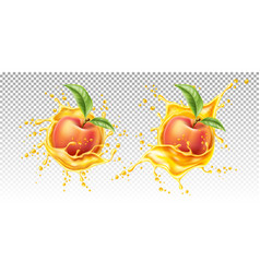 realistic peach leaf in juice splash vector image