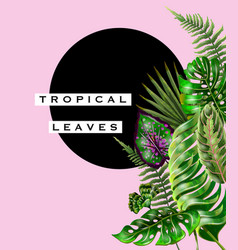 tropical design for banner or flyer vector image