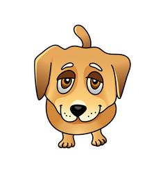 Cute sad dog vector