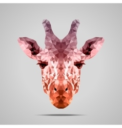Giraffe low poly Voodoo Raw Sienna vector image vector image