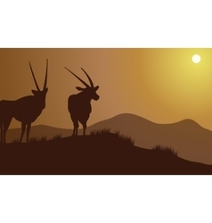Antelope silhouette on the hills vector image