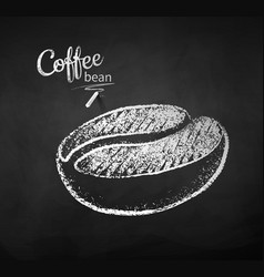 Black and white chalk sketch coffee beans vector