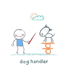 canine teaches the dog to keep the balance vector image vector image
