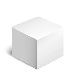 Cardboard Package Box White Package Square vector image