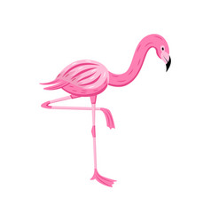 colorful cartoon flamingo looking down standing on vector image