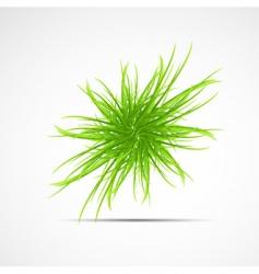 Natural elements background vector