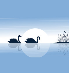 Silhouette of two swan on lake scenery vector