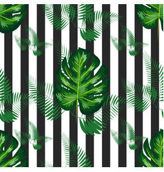 Summer design for swimwear exotic palm greenery vector