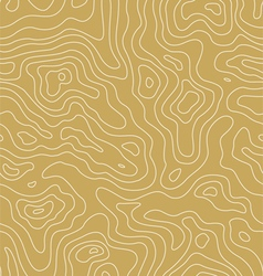 Topographic Map Pattern vector