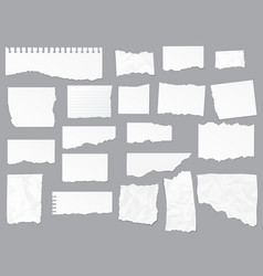 torn paper notes notebook realistic vector image