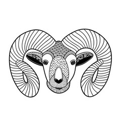 Zentangle head of mountain ram for coloring vector