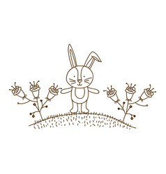 brown contour graphic of bunny in hill with plants vector image