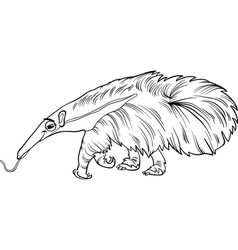 anteater animal cartoon coloring book vector image