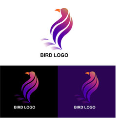 Bird logo template design vector