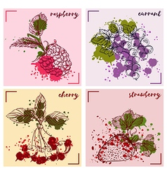 Fruits and berries in watercolor style vector
