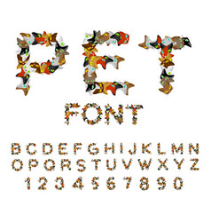 pet font cat alphabet letters of cats pets vector image