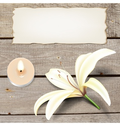 Realistic Lily Flower with Candle and Old Paper vector image