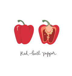 Red bell pepper set of whole and half paprika vector