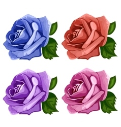 Rose buds blue pink purple and red vector