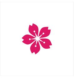 Sakura template design vector