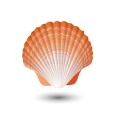 Seashell sea shell in seashell logo vector