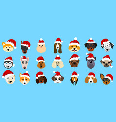 set different breeds of dogs in hats of santa vector image