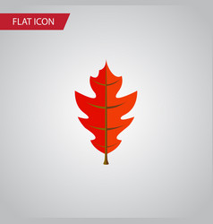 Isolated linden flat icon frond element vector