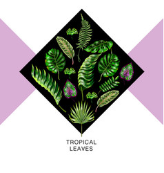 tropical design for banner with palm vector image