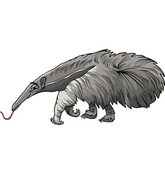 anteater animal cartoon vector image