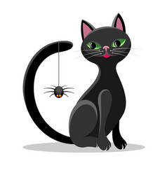 black cat and spider vector image