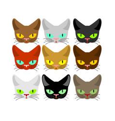 cat face set head cats different color muzzle pet vector image vector image
