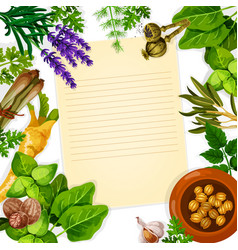 recipe paper with herb spice and leaf vegetable vector image