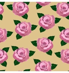 Seamless wallpaper pink roses vector image