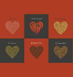 set spices in heart shape vector image