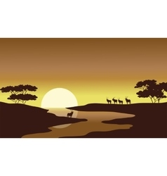 Silhouette of zebra in riverbank vector